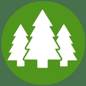 icono madera 100 natural