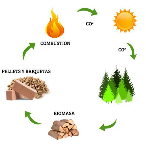 Ciclo del CO2 - Combustibles Naturales SL