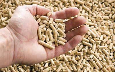España alcanza las 160.000 instalaciones de biomasa térmica y 7.275 MW instalados