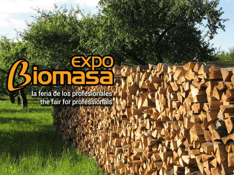 La biomasa evitó en 2016 las emisiones de CO2 equivalentes a las de 2,45 millones de coches